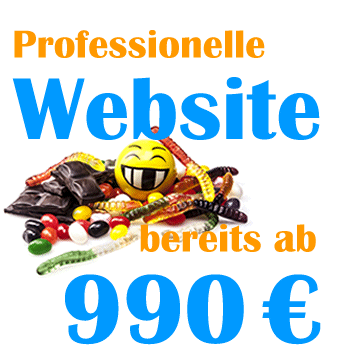 Website Preis